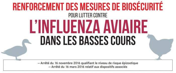 Information grippe aviaire - INFLUENZA AVIAIRE HAUTEMENT PATHOGÈNE (IAHP)