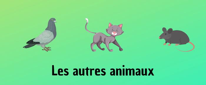 Les autres animaux